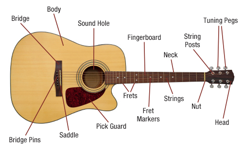 Acoustic Guitar Diagram