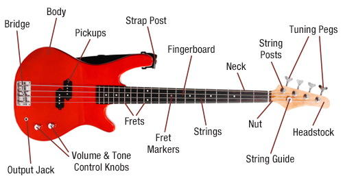 Bass Guitar Diagram