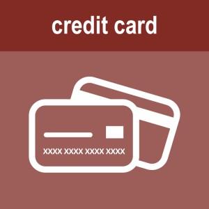 payyourinvoice-creditcard-icon