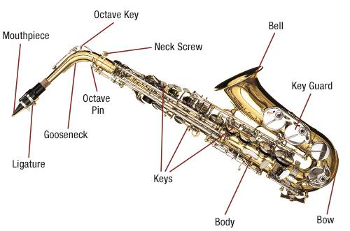 Saxophone Diagram