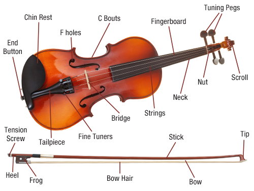 Violin Diagram